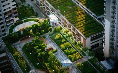 Los distritos térmicos como solución en las agendas de sostenibilidad de las ciudades